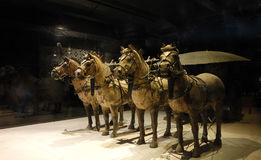 The Terracotta Army. Terra-cotta Warriors (Chinese: 兵马俑)and Horses is a collection of 8,099 life-size terra cotta figures of warriors and horses located in Stock Photos