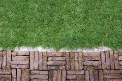 Terracotta brick path pattern with green grass. Old rough terracotta brick path pattern with cement edge and green grass Royalty Free Stock Images