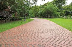 Terracotta Brick Paver Walkway in the Vibrant Green Garden in Thailand. Background royalty free stock photo