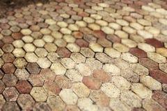 Terracotta che pavimenta mattonelle, piccola profondità di campo Fotografie Stock Libere da Diritti