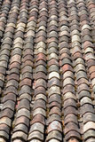 Terracotta curved roof tiles Stock Images