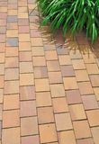 Terracotta floor Royalty Free Stock Photo