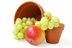 Terracotta flower pots with fruits Stock Image