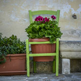 Terracotta flowerpot hanging in a chair Royalty Free Stock Photo