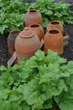 Terracotta garden pots. stock photography