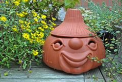 Terracotta head with plants still life Stock Photography