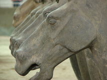 Terracotta Horse in China. A row of terracotta horse statues in Xi'an, China Royalty Free Stock Photos