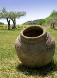 Terracotta jar. Sicilian terracotta amphora in a beautiful garden with olive trees - Italy stock photography