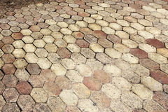 Terracotta paving tile Royalty Free Stock Photos
