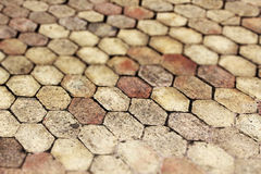Terracotta paving tile, small depth of field Royalty Free Stock Photo