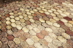 Terracotta paving tile, small depth of field Royalty Free Stock Photos