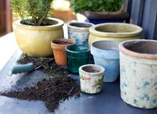 Terracotta plant pots on counter. Many empty terracotta plant pots on the counter with soil and trowel Stock Images