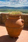 Terracotta pot on terrace, Tuscany Stock Image