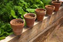 Terracotta pots with soil royalty free stock photography