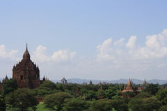 Bagan. Terracotta temples and stupas jut out of the trees in Bagan, Myanmar Royalty Free Stock Images