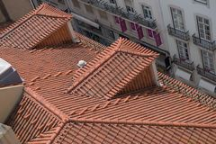 Terracotta tiled roofs Royalty Free Stock Image