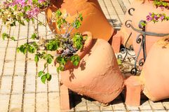 Terracotta Vases. With Plants on an Urban Garden Stock Images