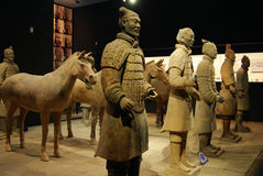 Terracotta warrior Stock Photos