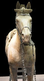 Terracotta Warrior Horse from Xian Stock Photos