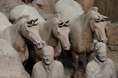 Terracotta Warriors and Horses - China Royalty Free Stock Photo