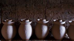 Terraglie di ceramica del greenware della zuppa di pesce Fotografia Stock Libera da Diritti