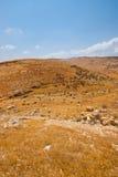 Terrain arkivbild