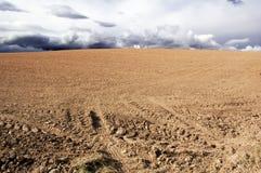 Terrain agricole photo stock