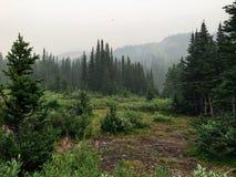 Terrain de camping à distance et d'isolement près du lac caché profond et haut dans les montagnes rocheuses canadiennes image stock