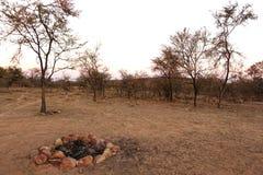 Terrain de camping de Bush Image libre de droits