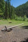 Terrain de camping de montagne Photos stock