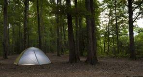 Terrain de camping de forêt au crépuscule image stock