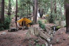 Terrain de camping le long de côté d'une crique dans une forêt de séquoia en Californie Image libre de droits