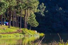 Terrain de camping sous des arbres en parc national de la Thaïlande Images stock