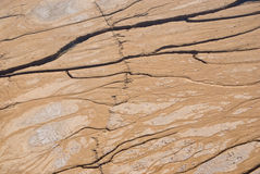 Terrain de désert Images libres de droits
