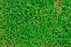 Terrain de football artificiel d'herbe Image stock
