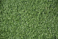 Terrain de football de pelouse (terrain de football, herbe verte) Images stock