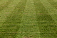 Terrain de football naturel d'herbe verte Photographie stock