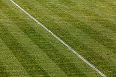 Terrain de football naturel d'herbe verte Photo stock