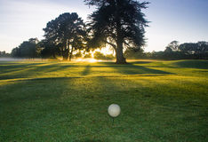 Terrain de golf à l'aube Image stock