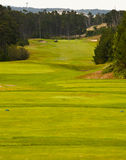 Terrain de golf Photos libres de droits