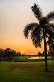 Terrain de golf au coucher du soleil Images stock