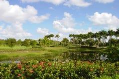 Terrain de golf avec des vues de lac Images stock