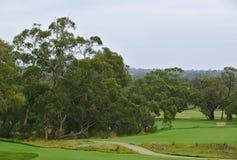 Terrain de golf avec lisse images libres de droits