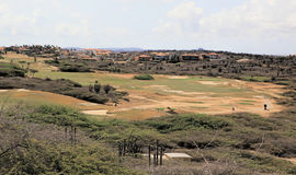 Terrain de golf d'Aruba Images stock