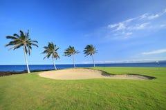 Terrain de golf d'Hawaï image stock