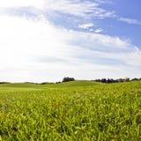 Terrain de golf dans Belek Herbe verte sur la zone Ciel bleu, ensoleillé Images libres de droits