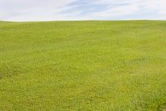 Terrain de golf dans Belek Herbe verte sur la zone Ciel bleu, ensoleillé Photos stock
