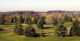 Terrain de golf dans des arbres de pin Images libres de droits