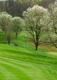 Terrain de golf dans le printemps images stock