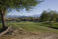 Terrain de golf de signature de joueur de Gary photos stock